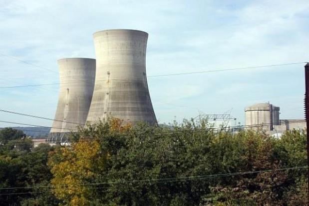 Nowe elektrownie daleko w lesie