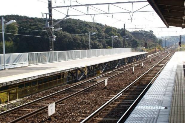 Więcej pociągów i czynne kasy na święta
