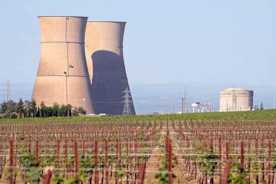 Elektrownie chcą lasów