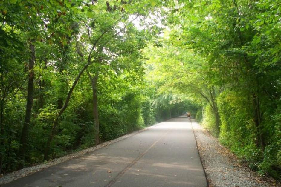 Bezpieczne czy zielone drogi?