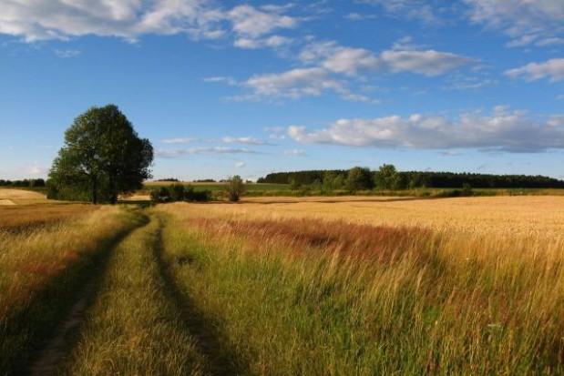 Poprawia się polska struktura agrarna