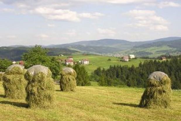 Dotacje dla młodych rolników na finiszu