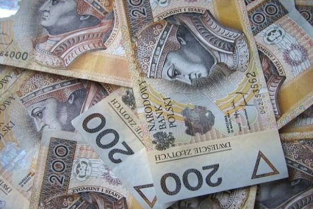 Samorządom nie grozi bankructwo