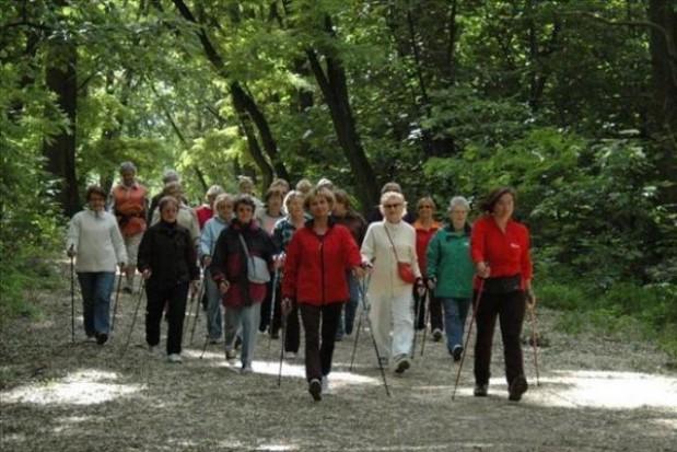Nordic Walking Park w Puszczy Białowieskiej