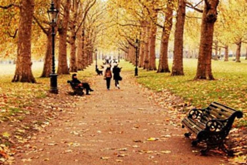 Koszaliński park będzie rewitalizowany