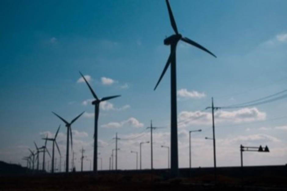 100 wiatraków w Darłowie