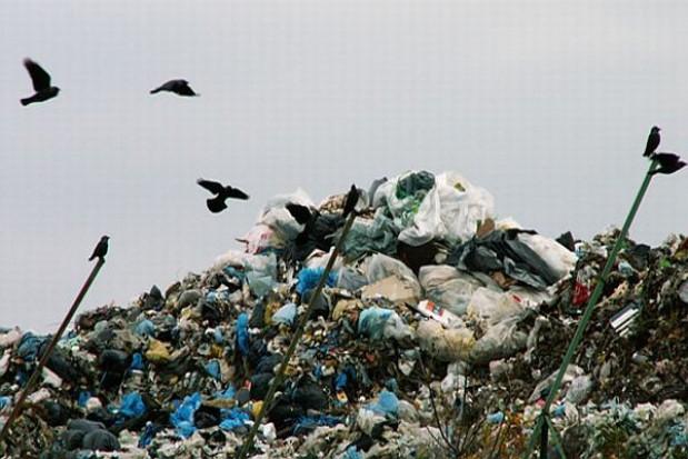 Unieszkodliwią odpady komunalne