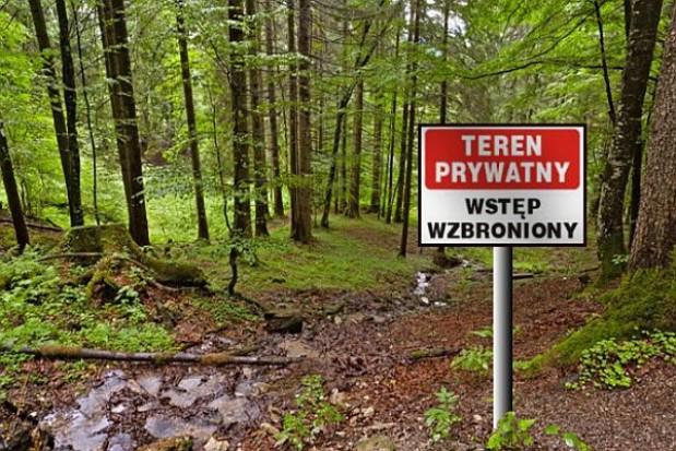 Zbudują ośrodek edukacji przyrodniczo-leśnej