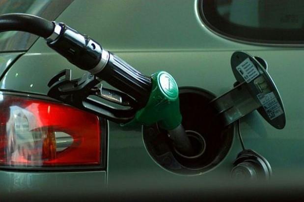 Prezydent kontra monopol paliwowy w mieście