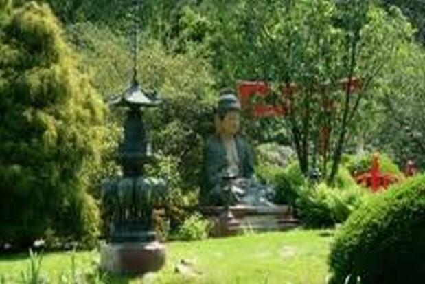 W parku Habsburgów wyrośnie leczniczy ogród