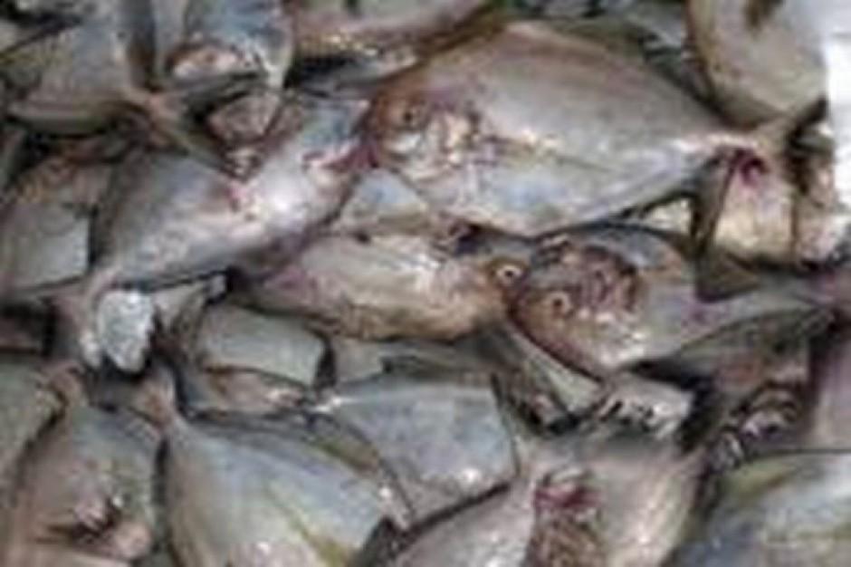 Urzędnicy z rybakami o dofinansowaniu