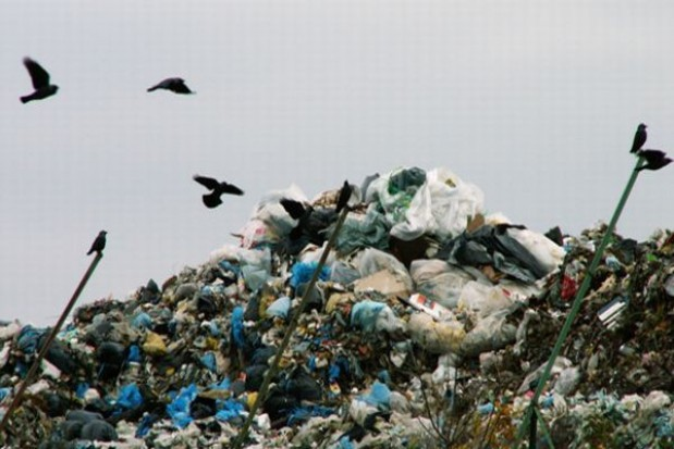 O śmieciach zdecyduje ankieta