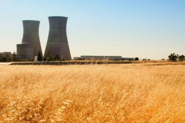 Biomasa zastąpi węgiel w elektrociepłowniach
