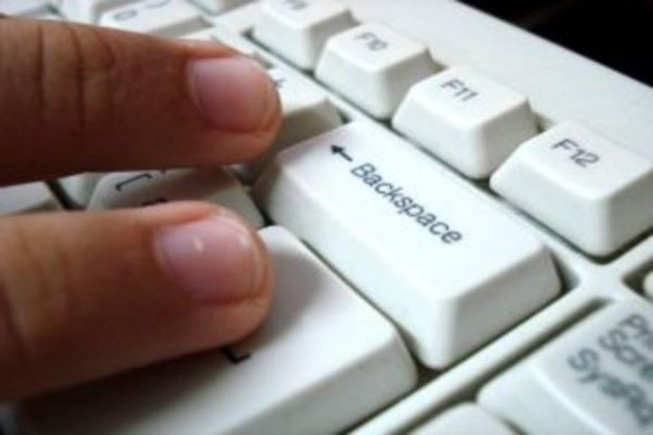 Ponad 2 mln osób spisało się przez internet