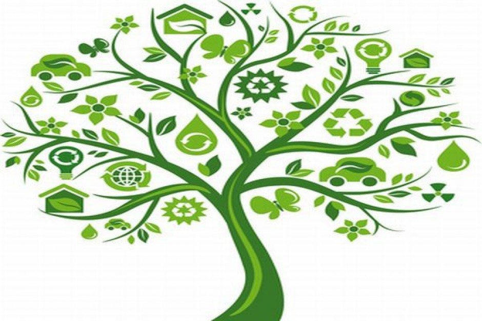Targi ekologiczne w Koszalinie