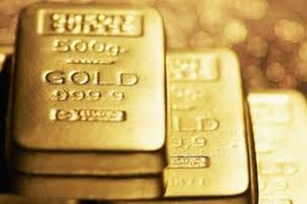 Szukali złota koło Jeleniej Góry