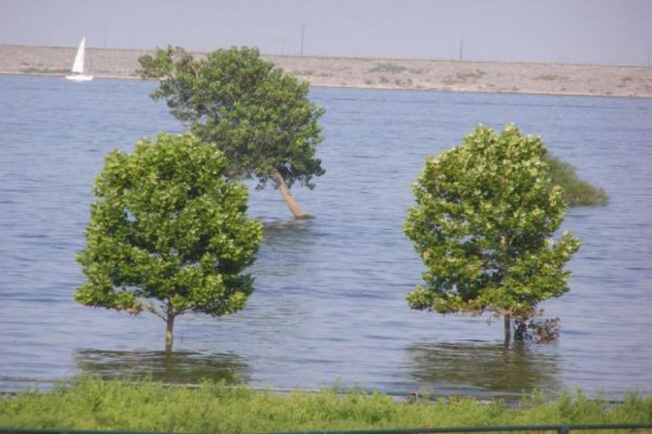 Prawie 9 mln zł na ochronę przed powodzią