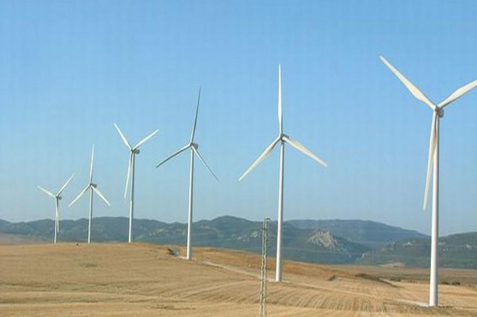 Energetyka wiatrowa popularna w Polsce