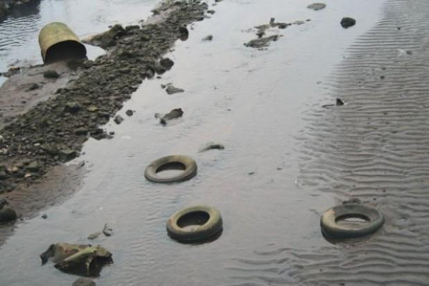 Urzędnicy sprzątają jeziora