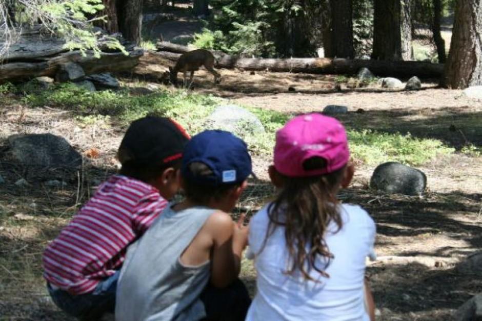 Dzień Dziecka w Parku Agrykoli