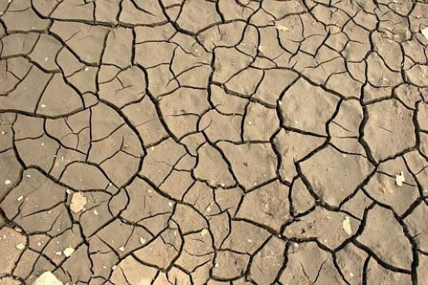 812 gminom w 10 województwach grozi susza