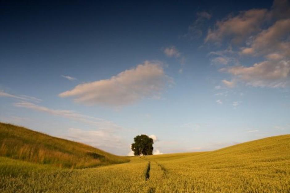 18 mln zł z UE na odnowę wsi podlaskich