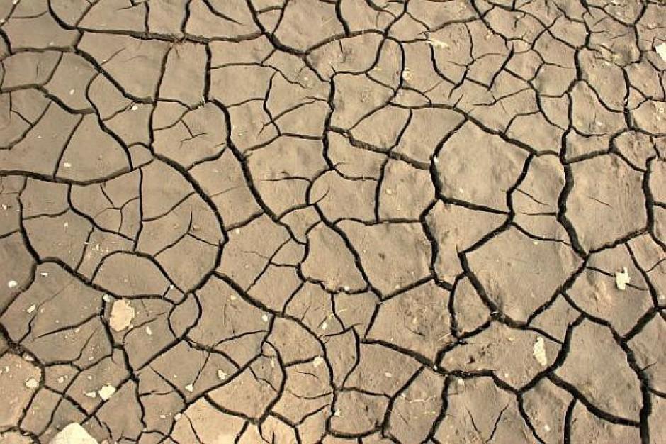 Coraz mniejsze zagrożenie suszą
