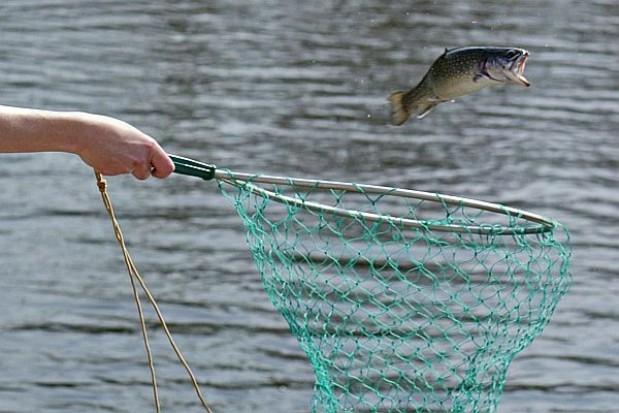 Ponad 70 projektów na działania rybackie