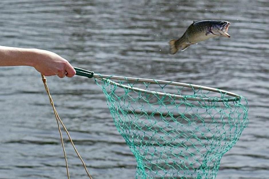 Ponad 24 mln zł dla grup rybackich