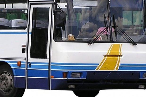 310 mln zł z UE na transport publiczny
