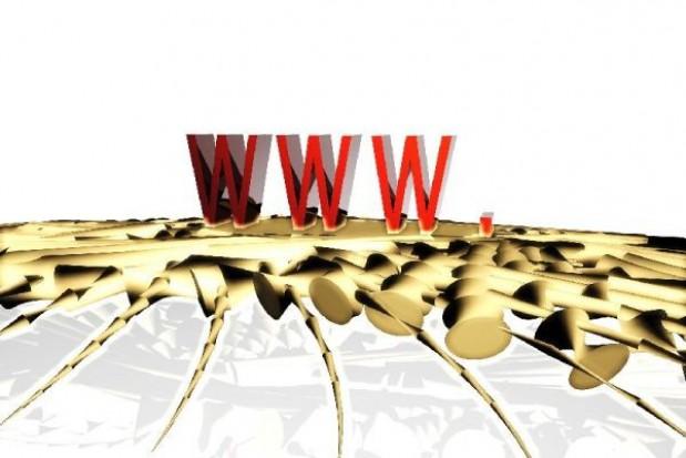 Polska online za cztery lata