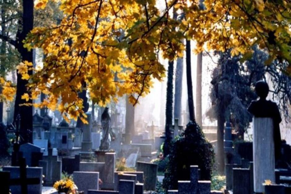 W Legnicy powstanie cmentarz