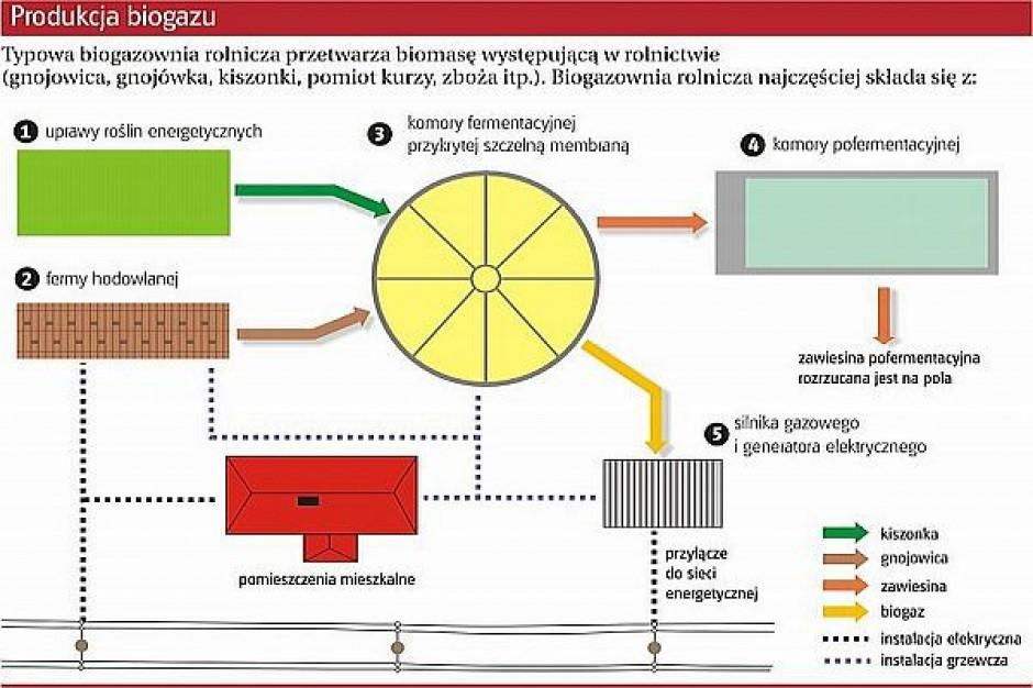 Dotacje na biogazownie lub przedszkola
