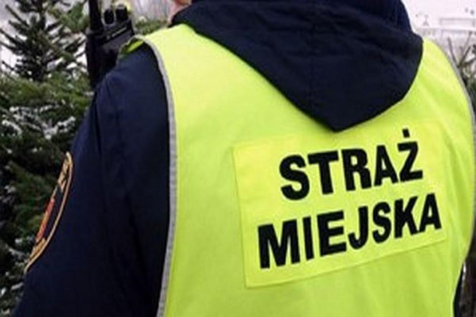 Nie prosili o pilnowanie biura europosła