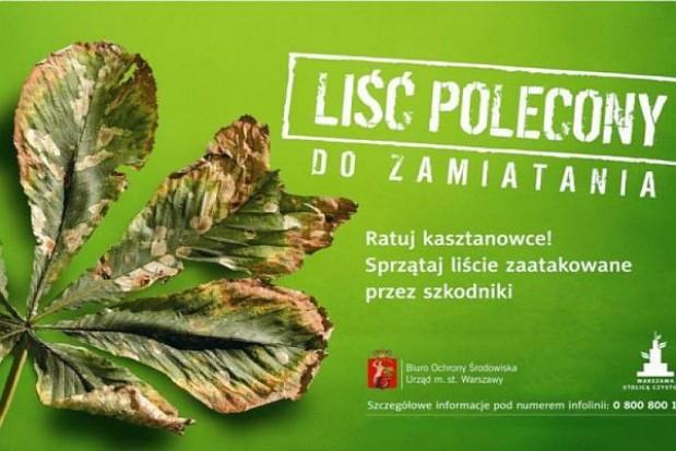 Warszawski liść polecony