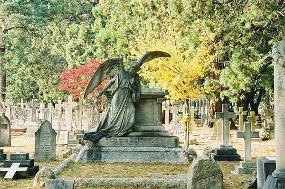 Zbierają na zabytki Starego Cmentarza w Łodzi