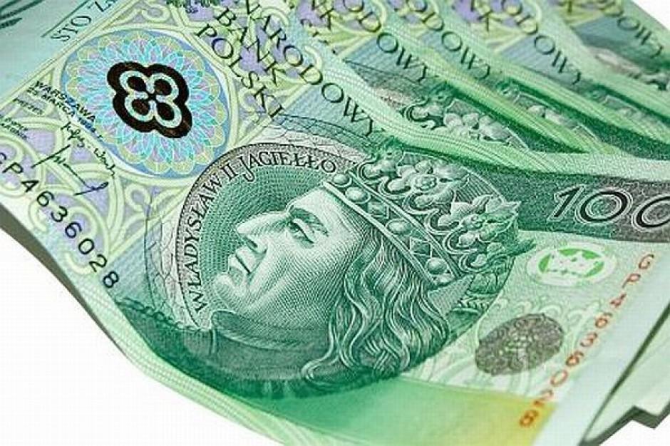 Prawie 50 mln zł na inwestycje na wsiach