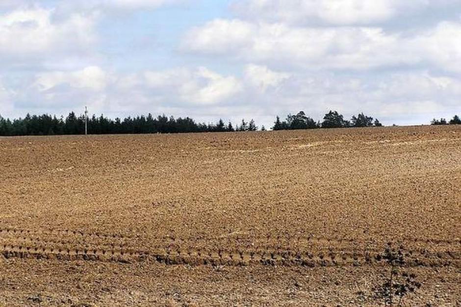 Gdzie najdroższa ziemia rolna w kraju?