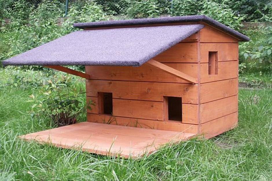 Miasto rozdaje domki dla kotów