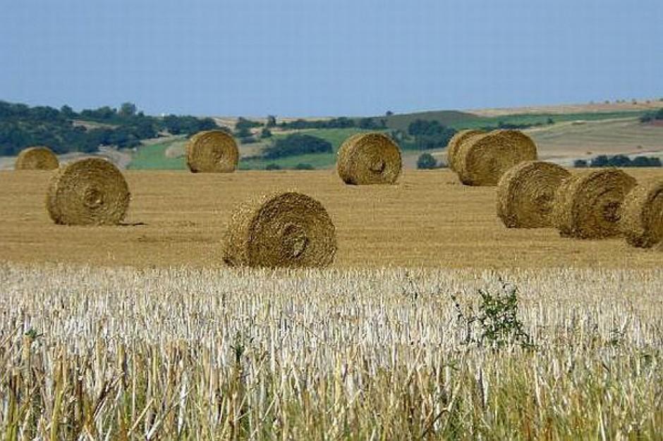 Wiejskie tereny z dotacjami