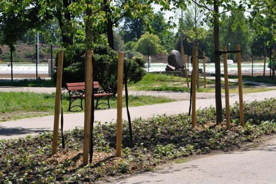 Kto zadba o park w Legnicy?