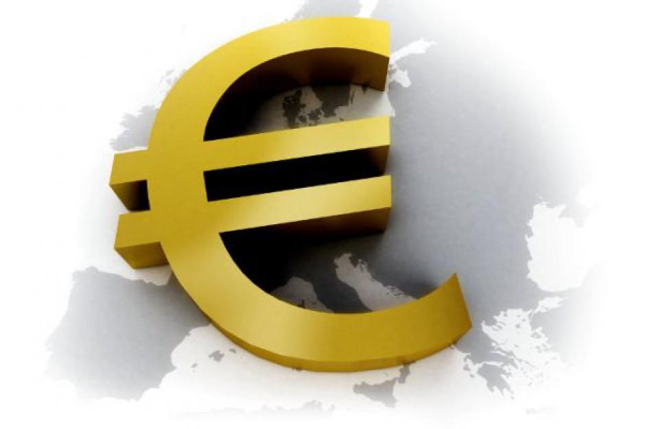 Dyskusje nad wprowadzeniem euro