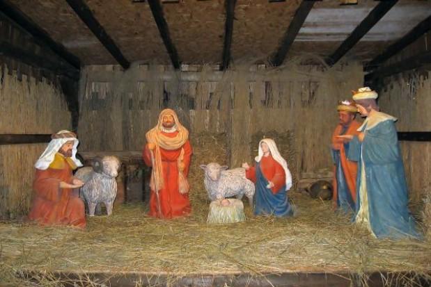 Wystawa szopek bożonarodzeniowych w Toruniu