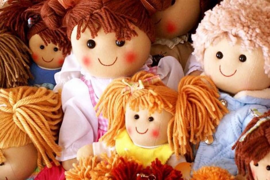 Świętokrzyski Ośrodek Adopcyjny już działa