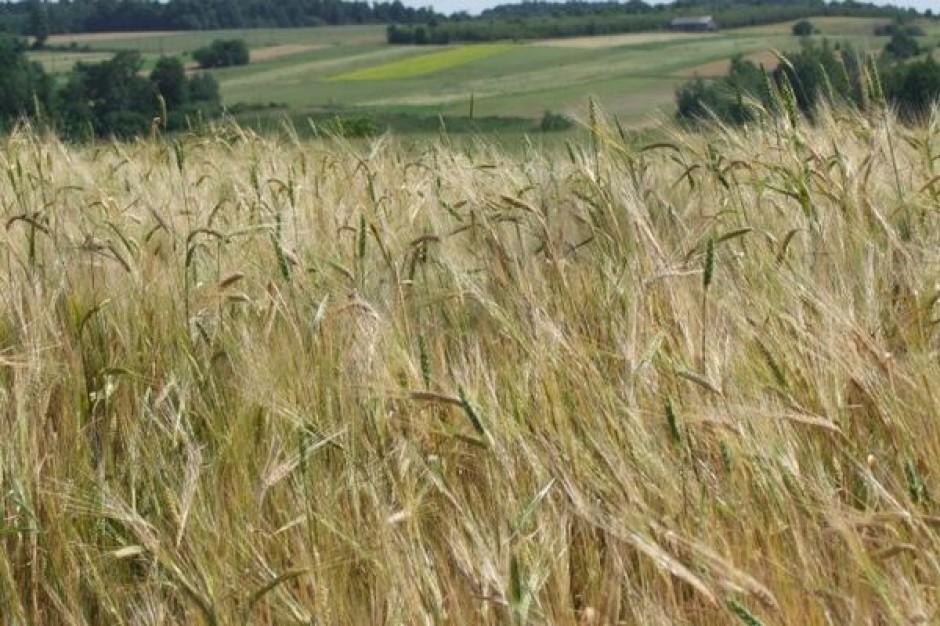 Blisko 30 mln zł na rozwój lubuskich wsi