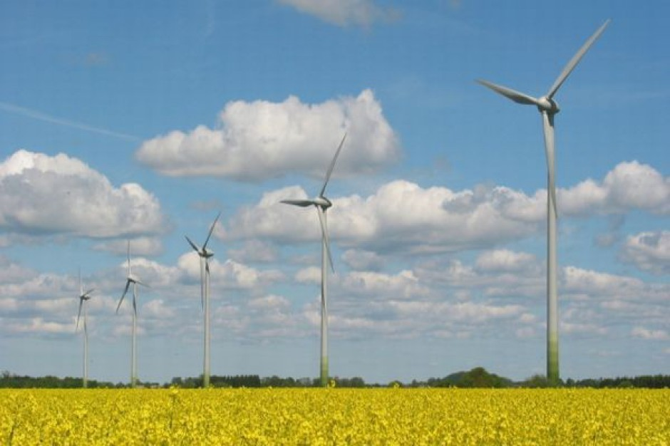 Rozwój energetyki wiatrowej musi być zrównoważony
