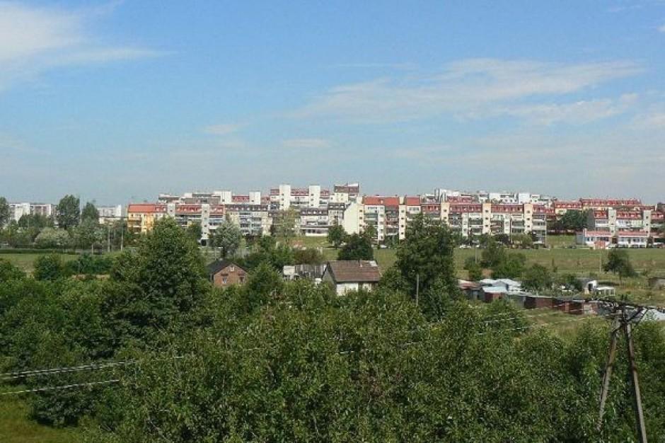 Rok pełny pracy w Bełchatowie
