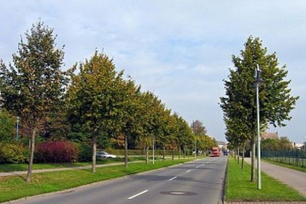 138 mln zł na rozbudowę drogi