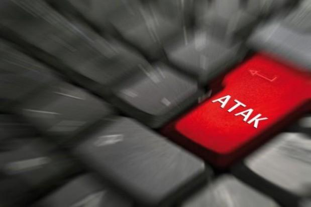 ACTA: 200 tys. podpisów z Polski