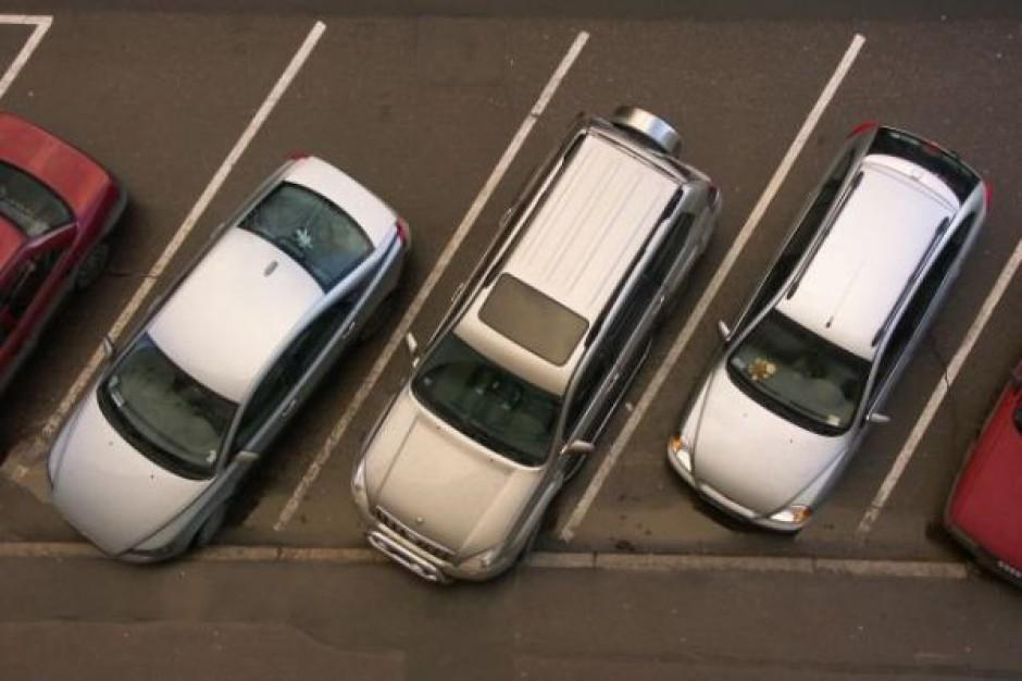 Sanocki parking z... drzewami na dachu